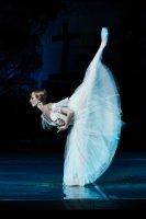 Фотовыставка  классического балета