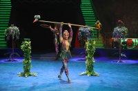 «Все краски мира» в Цирке Никулина на Цветном бульваре